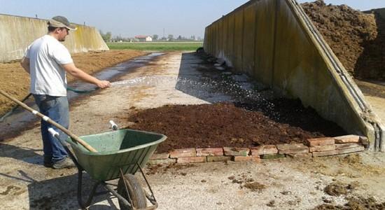 Lettiere agrilombricoltura terra vivaagrilombricoltura for Piscine laghetto per pesci