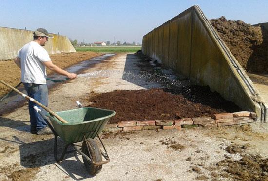 Giardinaggio - Compostaggio e lombrichi: come costruire una